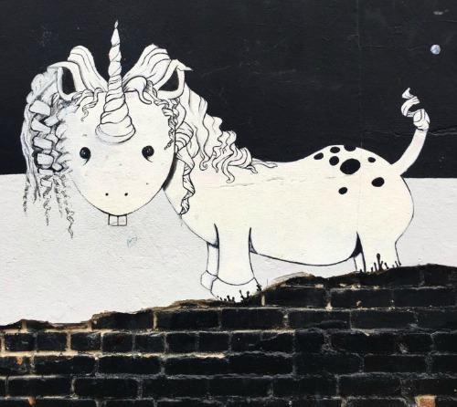 Unicorns, Horses and Zebras